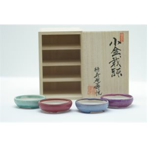 Ens. 4 pots mini 65 mm  /  Boîte Japonaise - JUETSU