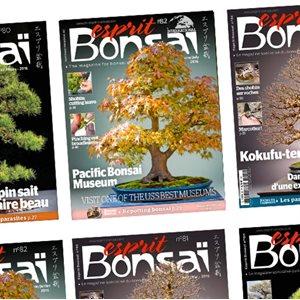 Esprit-Bonsaï - Abonnement - 2 ans - 12 numéros