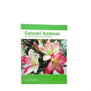 Satsuki Azalée japonaise