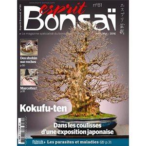 Esprit-Bonsai - Série régulière.