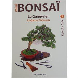 Mini-bonsai - Génévriers - Kyosuke Gun