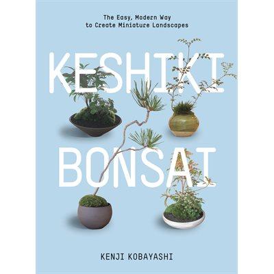 Keshiki bonsaï - Ulmer