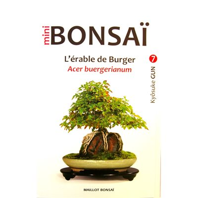 Mini-Bonsai - Erables Burger - Kyosuke Gun