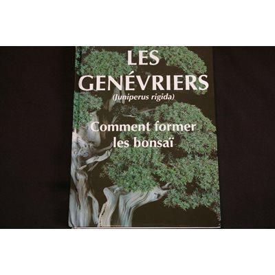 Génévriers - Comment former les bonsaï