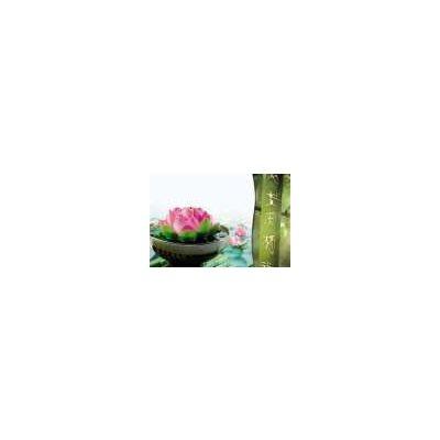 Carte - Fleur de lotus et bambou