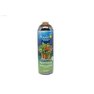 Algue Marine Acadie - Liquide